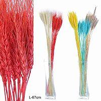 Сухоцветы лагурус 25 штук набор / 419-15 /уп 300/