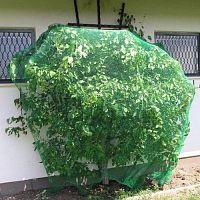 Миниковрик Черепашонок зеленый на присосах 1шт