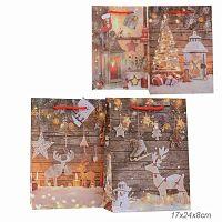 Пакет подарочный 17х24x8 Новый год + ПОДАРОК гирлянда к уп. 12 шт / 16023S /уп 12/960/