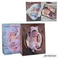 Пакет подарочный 24х18х8,5 С новорожденным / 9293-1 /уп 12/720/